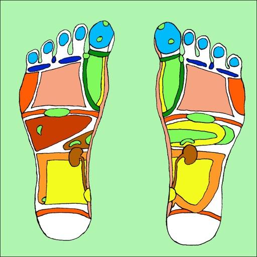 Treat Your Feet - Reflexology