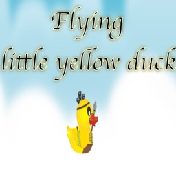 Flying little yellow duck