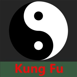 Kung Fu Moment