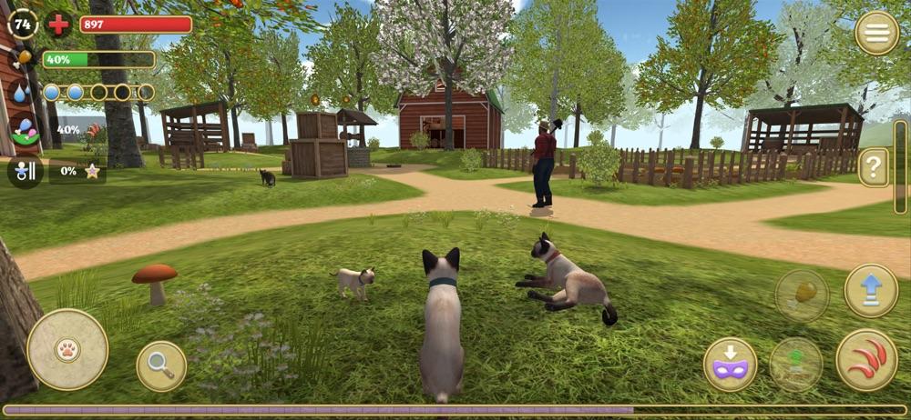 Cat Simulator 2020 Cheat Codes