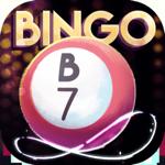 Bingo Infinity Hack Online Generator  img