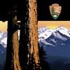 NPS Sequoia & Kings Canyon
