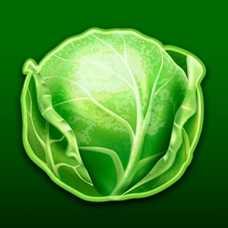 Cabbage By Fain Veb