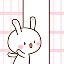 Cever Rabbit