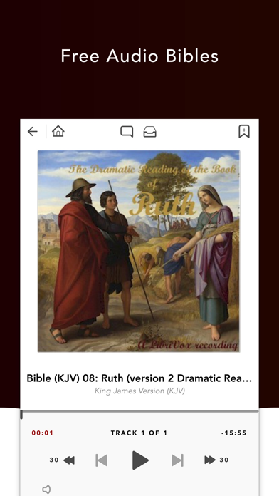 Screenshot for Audio Bibles in United States App Store