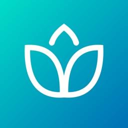 Guided Meditation & Optimism