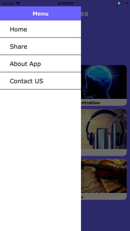 Relaxing Music App screenshot-3
