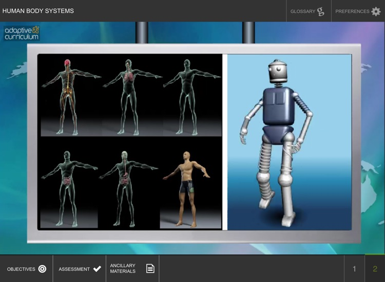Systems in the Human Body screenshot-3