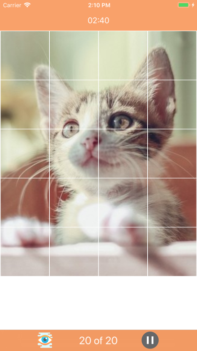 Cat Game: Puzzle screenshot 1