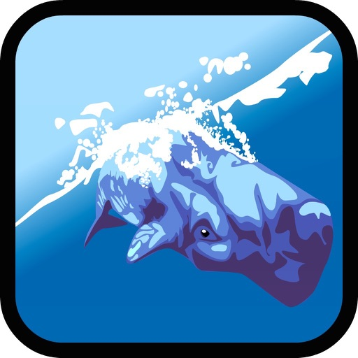 Sea World: Kids Dolphin Games image