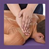 Anatomy & Sports Massage AR - ブックアプリ
