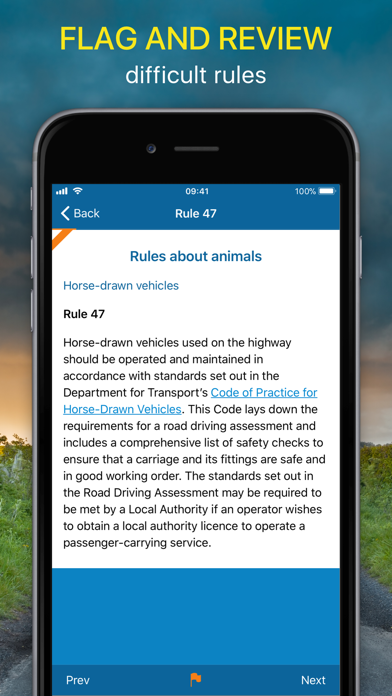 The Highway Code 2020 UKScreenshot of 4