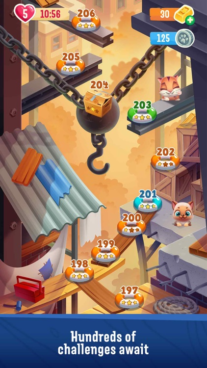 Pet Rescue Puzzle Saga screenshot-2