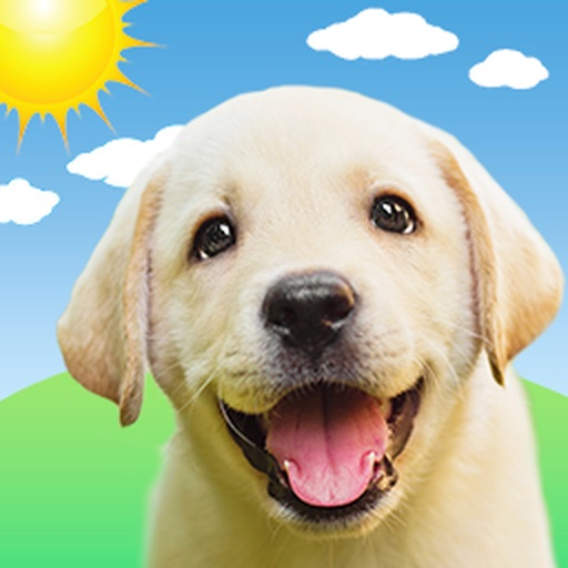 Weather Puppy: Forecast Radar