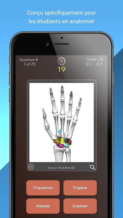 Anatomist – Anatomie Quiz Jeu sur pc