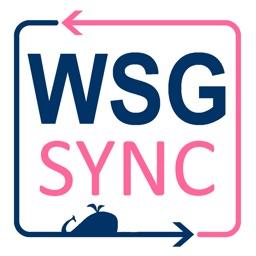 WSG Sync