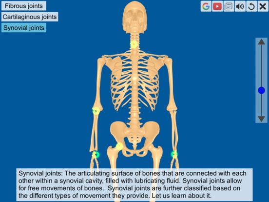 Joints: The Human Levers screenshot 8