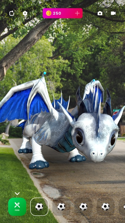 AR Dragons - Augmented Pets screenshot-3