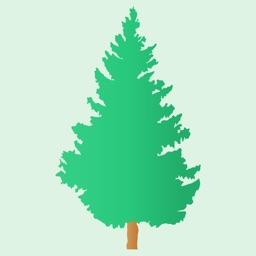 Pine - Deep Breathing