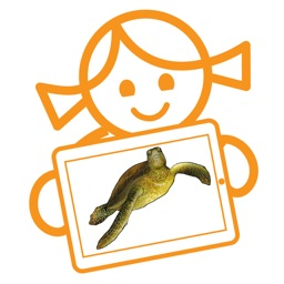 Rolf AR Life of the Sea Turtle