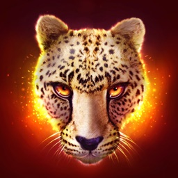 The Cheetah: RPG Simulator