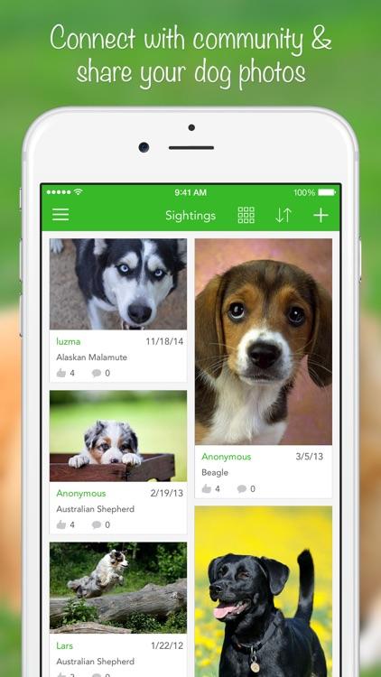 iKnow Dogs 2 LITE screenshot-4