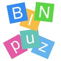 Codes for BinPuz Hack