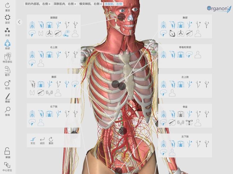 3D Organon Anatomy Enterprise screenshot-9
