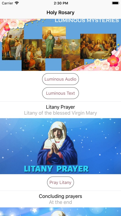 Holy Rosary With Audio & Text screenshot-4