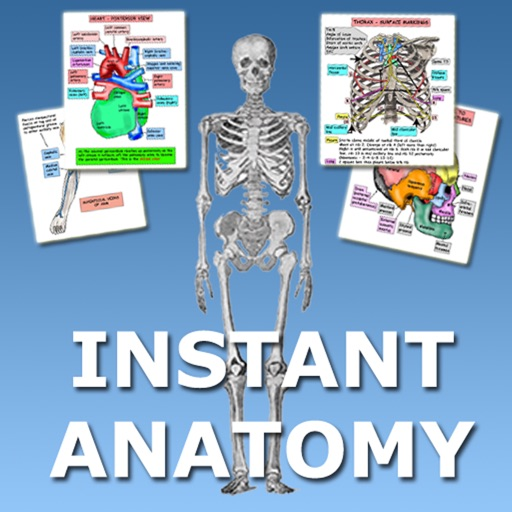 Instant Anatomy Flash Cards