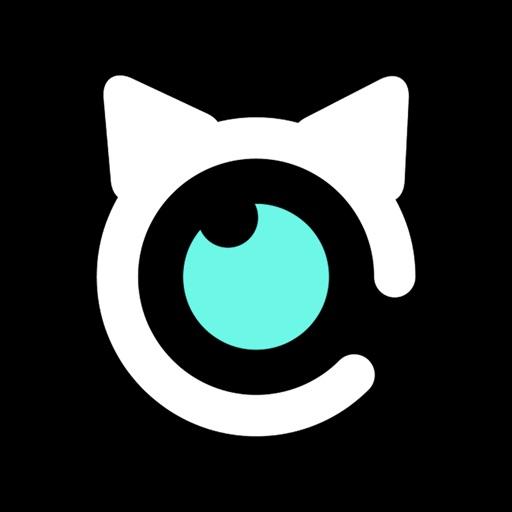 原创猫-原创x潮流x设计