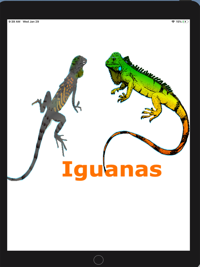 ‎Two Iguanas Screenshot