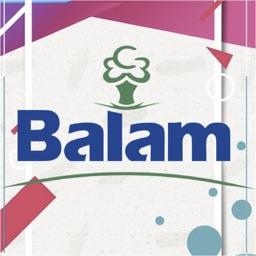 OrganizAPP Balam