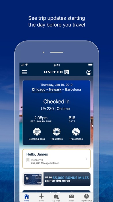 United Airlines wiki review and how to guide