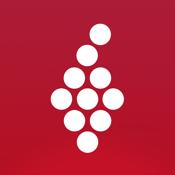 Vivino app review