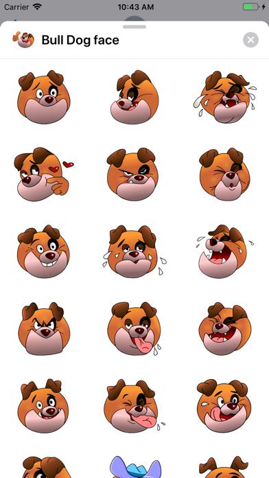 Bull Dog face screenshot 1