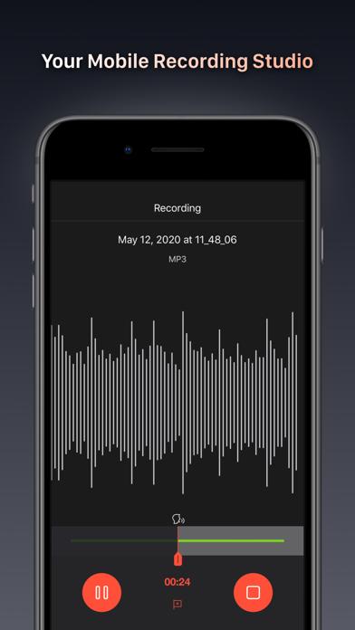 Voice Recorder Pro - Recording Screenshot