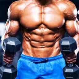 Gym Workout Fitness Simulator