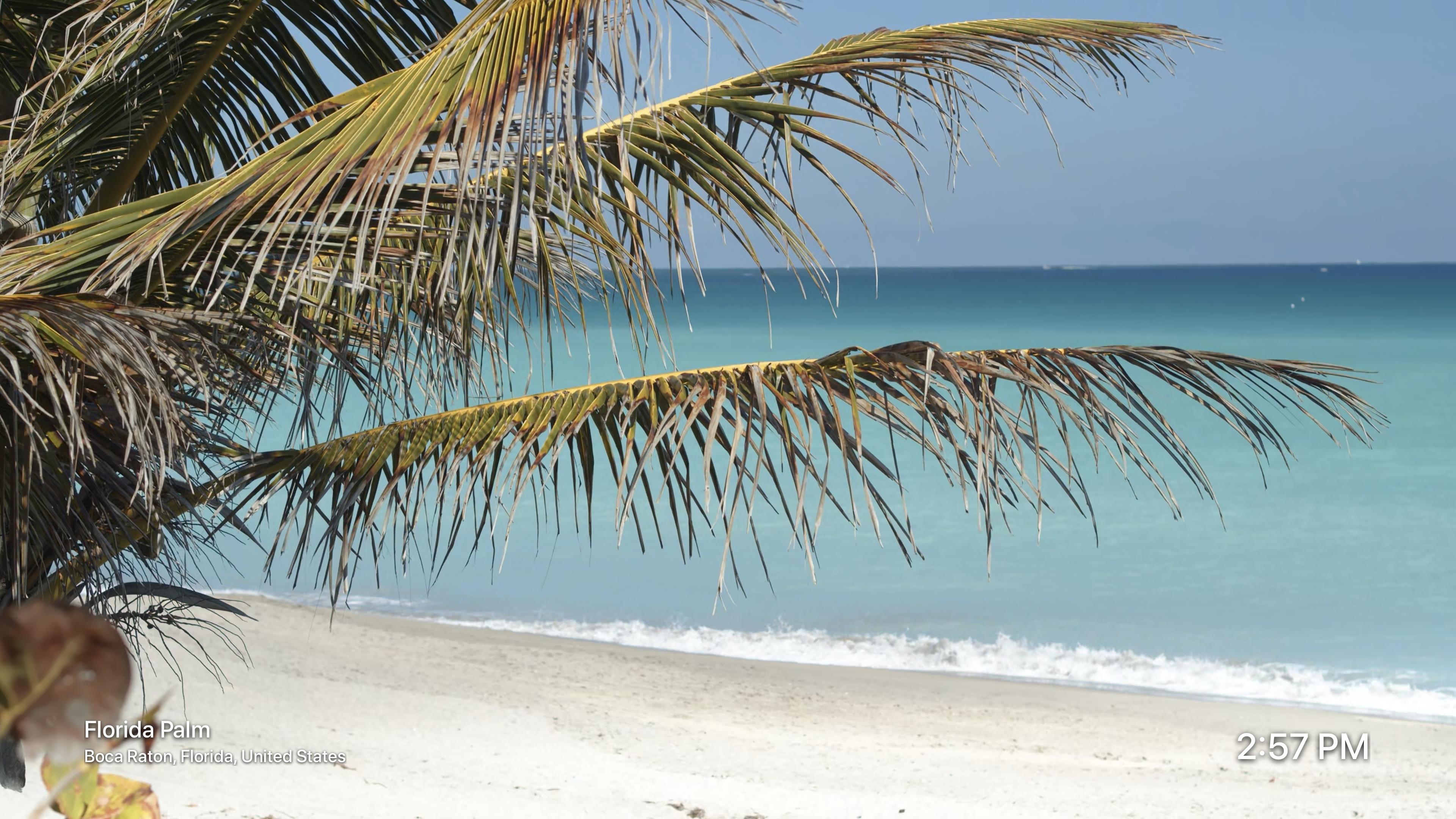 Beaches by Magic Window screenshot 3