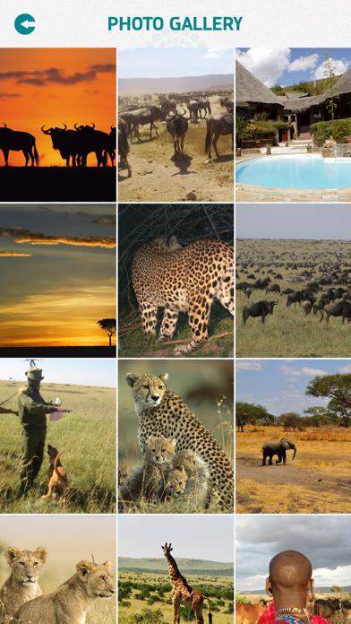 Masai Mara National Reserve screenshot 4