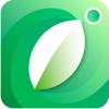 PlantFinder - Plant Identifier