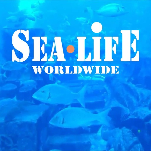 Sea Life worldwide