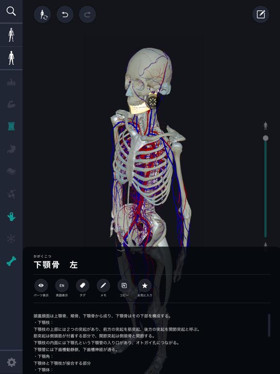3D人体解剖学 teamLabBody2020のおすすめ画像3