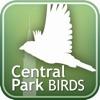 Audubon Birds of Central Park - iPhoneアプリ