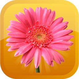 Florist-Emojis Stickers