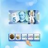 Money Matrix (CAD)