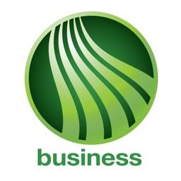 Webster Five Business