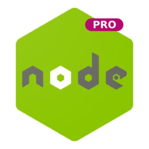 Learn Node.js Programming PRO
