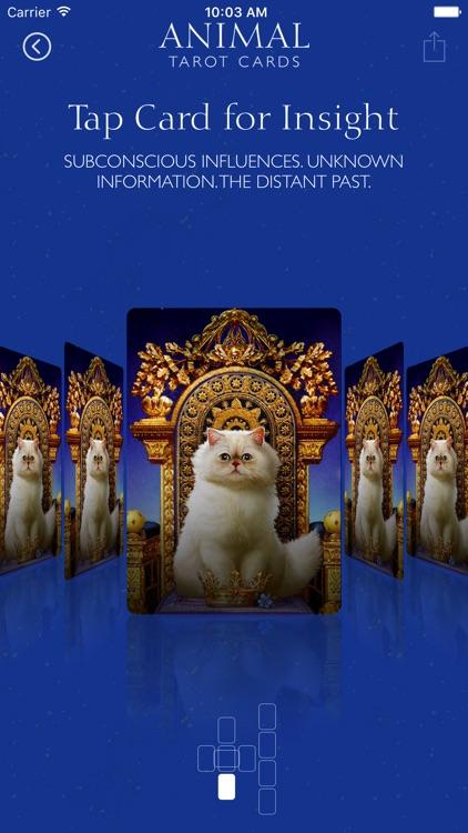 Animal Tarot Cards