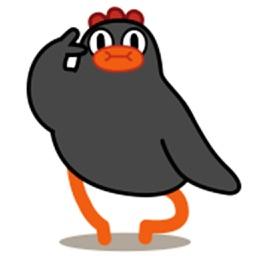 Black Chicken 02